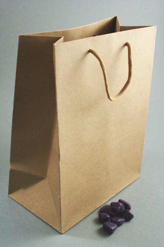 Natural Brown Paper Gift Bag with Corded Handle. Approx Size 23cm x 18cm x 10cm